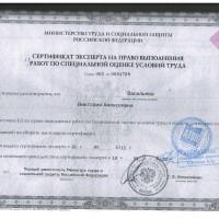 Сертификат эксперта на право выполнения работ по специальной оценки условий труда